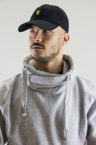schwarzgelb_model